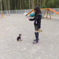 2014_05055-3チャッピーちゃん