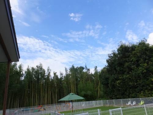 2014_08298-25風景